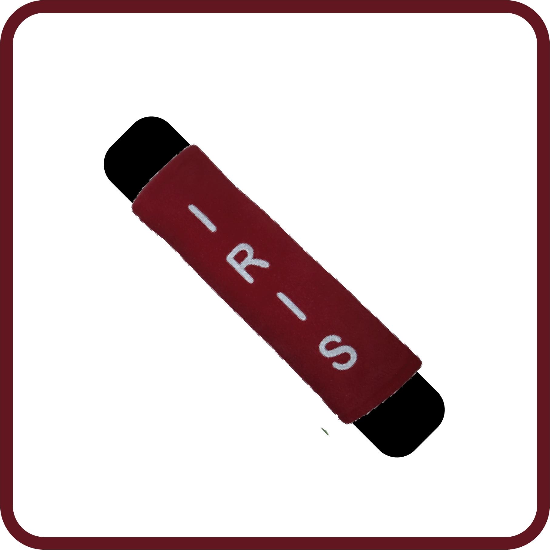 Autogordelhoes kinderen in hippe kleur rood