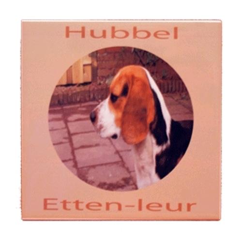 Honden foto op tegel 15 x 15 cm